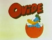 ovide_01