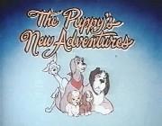puppys-09